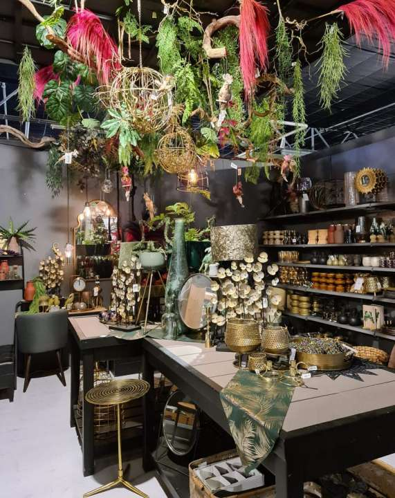 Kersartikelen online kopen | Tuincentrum Schmitz