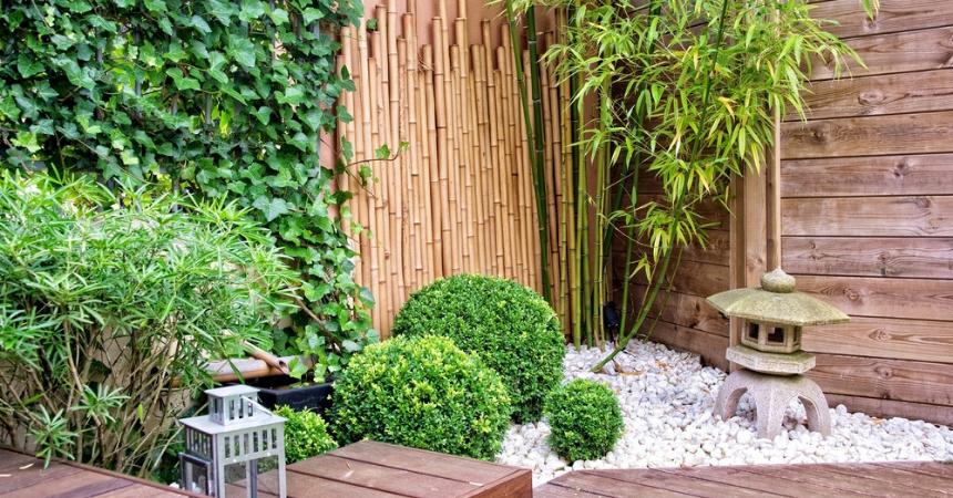 natuurlijke-afscheiding-tuincentrum-schmitz-vlodrop