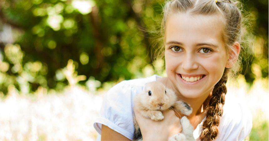 konijnen, cavia's en hamsters kopen