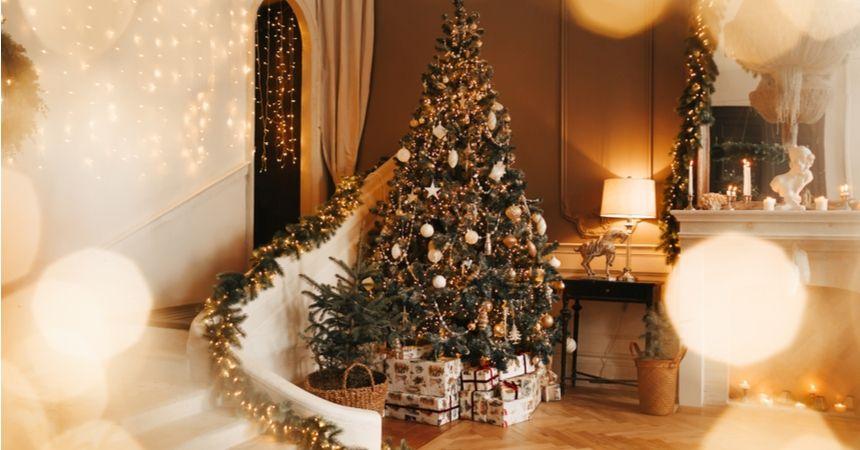kerstboomverlichting kopen in Vlodrop | Tuincentrum Schmitz