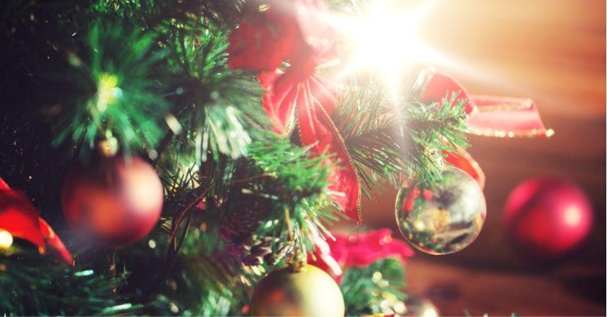 Kleine kerstboom of een echte kerstboom kopen