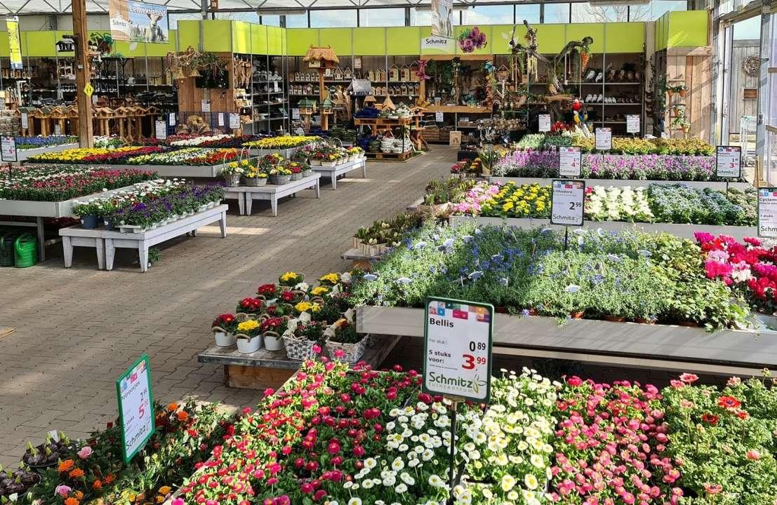 Tuinplanten kopen in Vlodrop, Limburg | Tuincentrum Schmitz